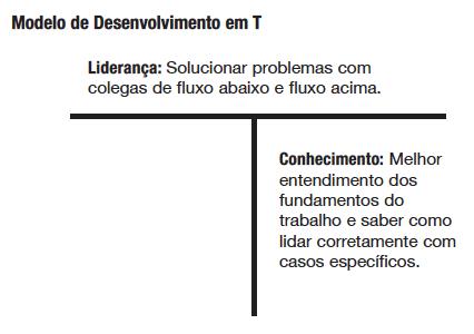 Modelo de desenvolvimento em T