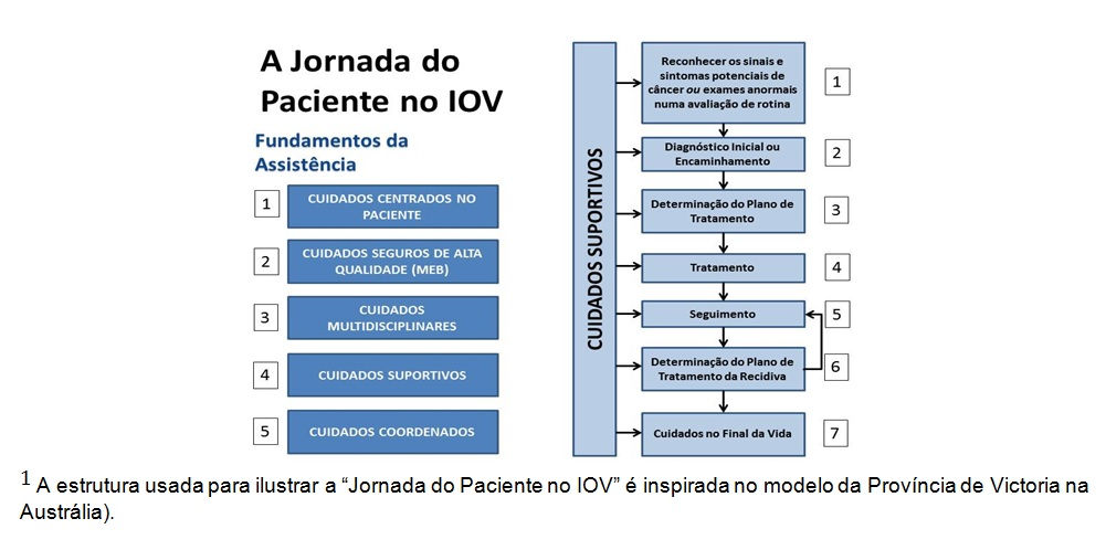 A Jornada do Paciente no IOV