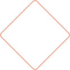 Networking empresarial e profissional